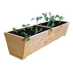 Macrocarpa Herb Planter - 900L (2 divisions)