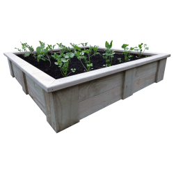 RAISED VEGETABLE PLANTING BED (1500L x 1500W x 330H)